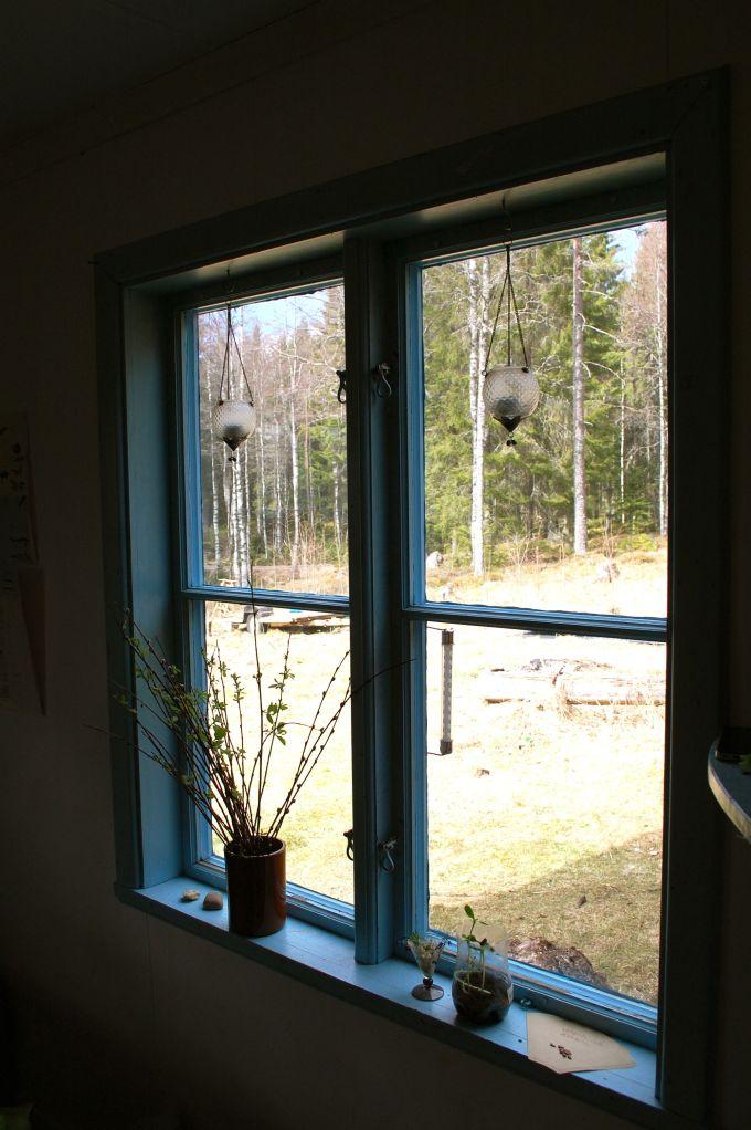 rene vinduer