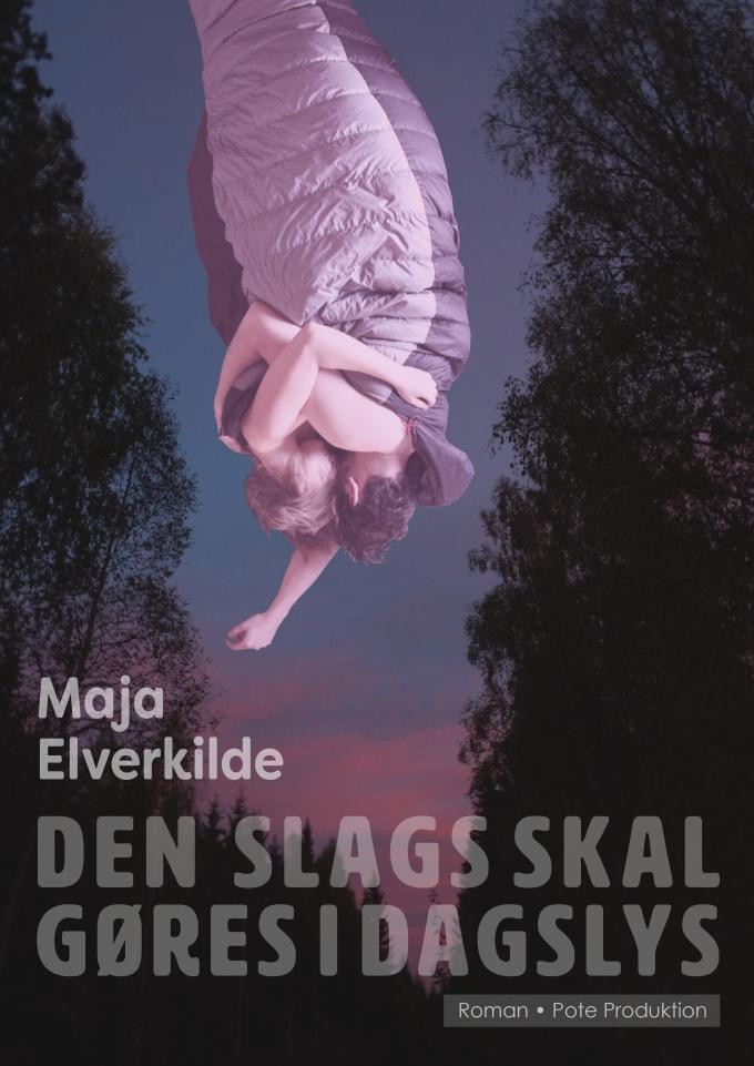 dssgid_cover_titelnede_nedtonet