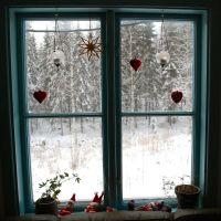 Decemberbilleder - skovlivet i 24 afsnit