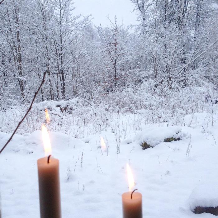 Tøblæst på en tirsdag – TorsdagsSkov*2
