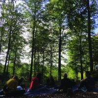 Skovskrivekursus for forældre og børn